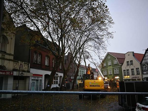 Beckum: Baumfällarbeiten auf dem Marktplatz laufen - Radio WAF